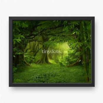 Ein sehr grüner tropischer Dschungel