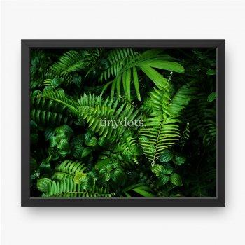 Intensywnie zielone liście lasów tropikalnych