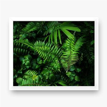 Plakat w ramie Intensywnie zielone liście lasów tropikalnych