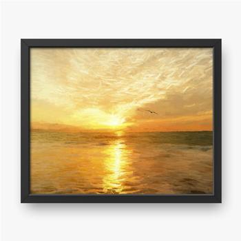 Ozean Sonnenuntergang Freiheit Vogel