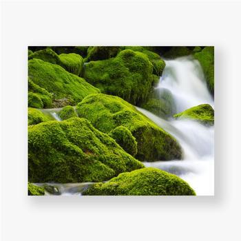 Poster Ein wunderschöner fließender Wasserfall zwischen den Steinen