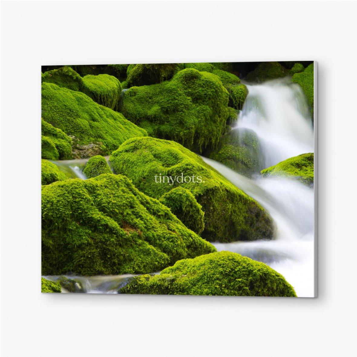 Bilder auf PVC Ein wunderschöner fließender Wasserfall zwischen den Steinen