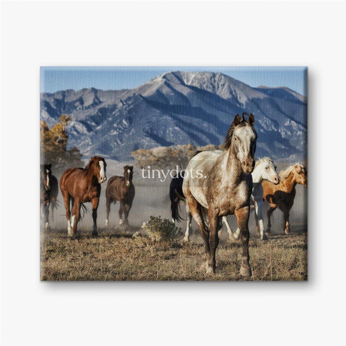 Leinwandbilder Ein Anführer von Laufpferden mit Bergkulisse
