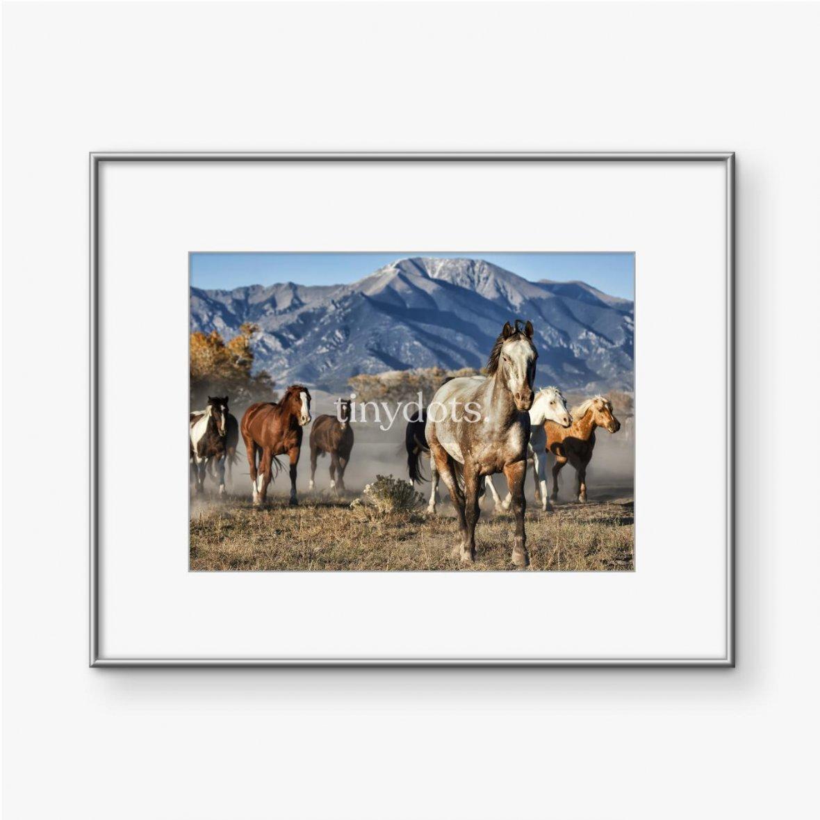 Gerahmte Poster Ein Anführer von Laufpferden mit Bergkulisse