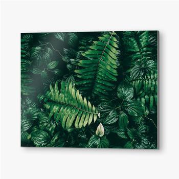 Bilder auf Alu-Dibond Tropisches grünes Blatt im dunklen Ton.