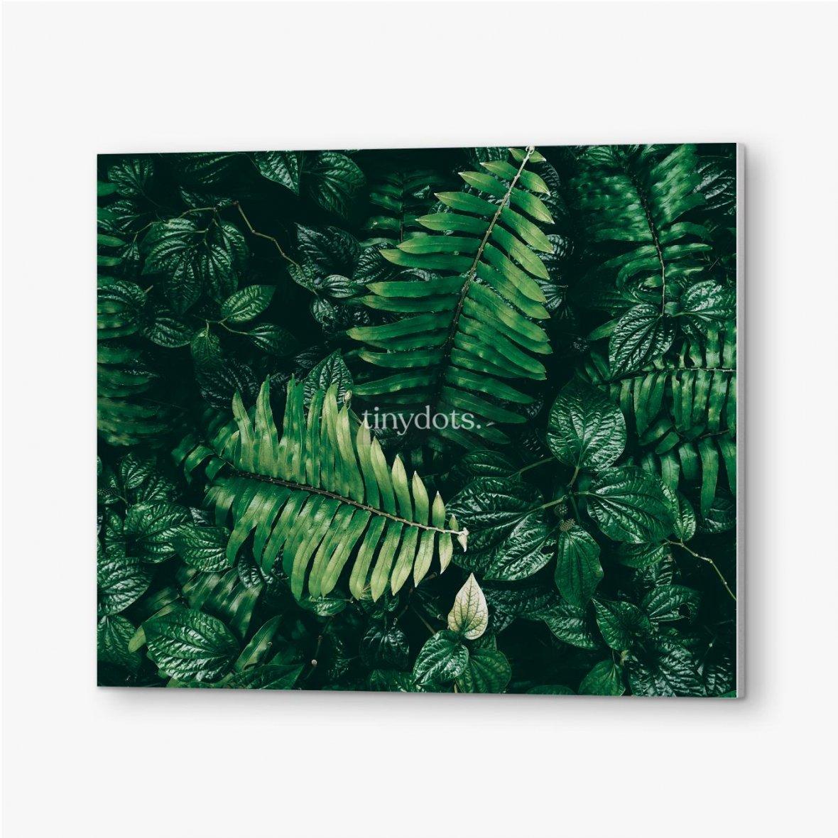 Bilder auf PVC Tropisches grünes Blatt im dunklen Ton.
