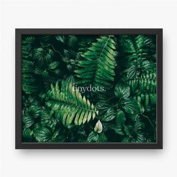 Tropikalny zielony liść w ciemnej tonacji.