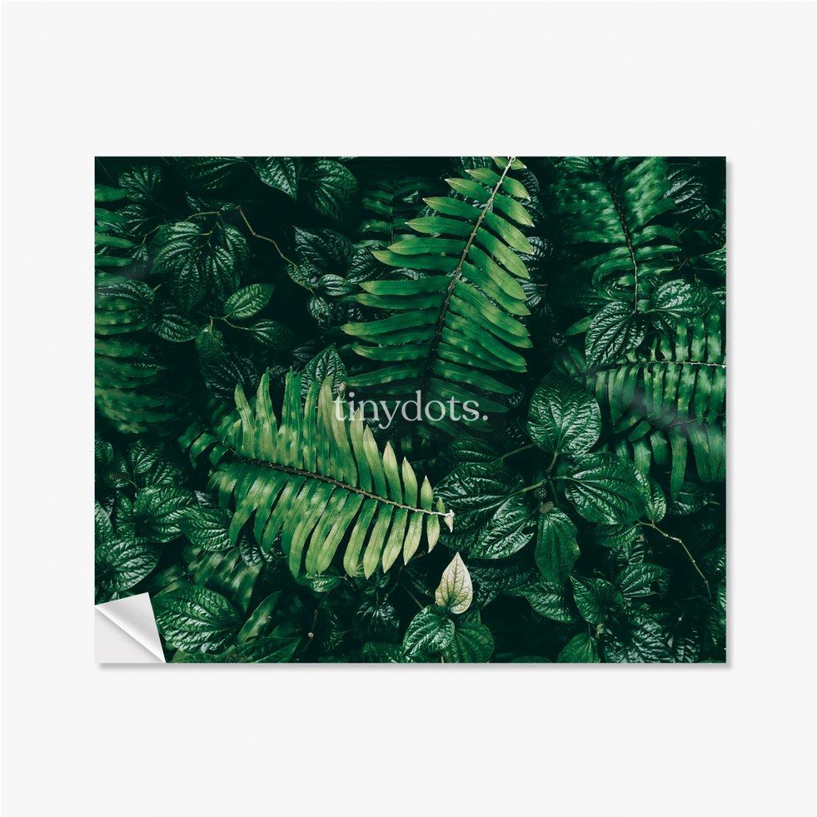 Selbstklebende Poster Tropisches grünes Blatt im dunklen Ton.