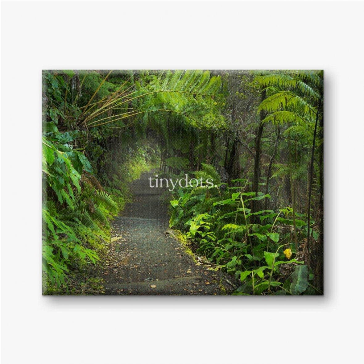 Leinwandbilder Üppiger Regenwald im Vulkan-Nationalpark Big Island Hawaii, USA