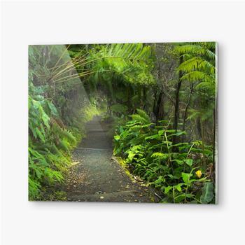 Bilder auf Acrylglas Üppiger Regenwald im Vulkan-Nationalpark Big Island Hawaii, USA