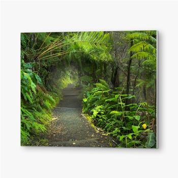 Bilder auf PVC Üppiger Regenwald im Vulkan-Nationalpark Big Island Hawaii, USA