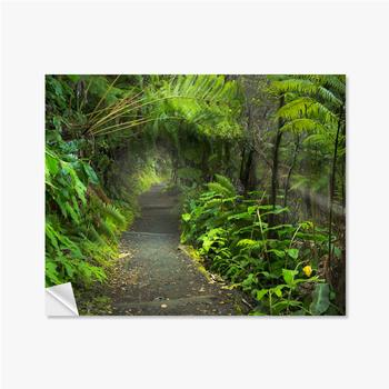 Selbstklebende Poster Üppiger Regenwald im Vulkan-Nationalpark Big Island Hawaii, USA