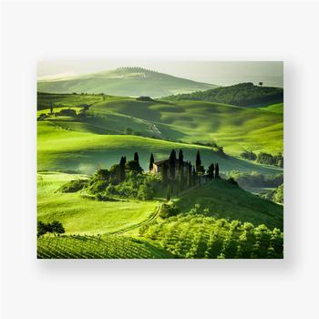 Poster Bauernhof von Olivenhainen und Weinbergen, schöne Landschaft