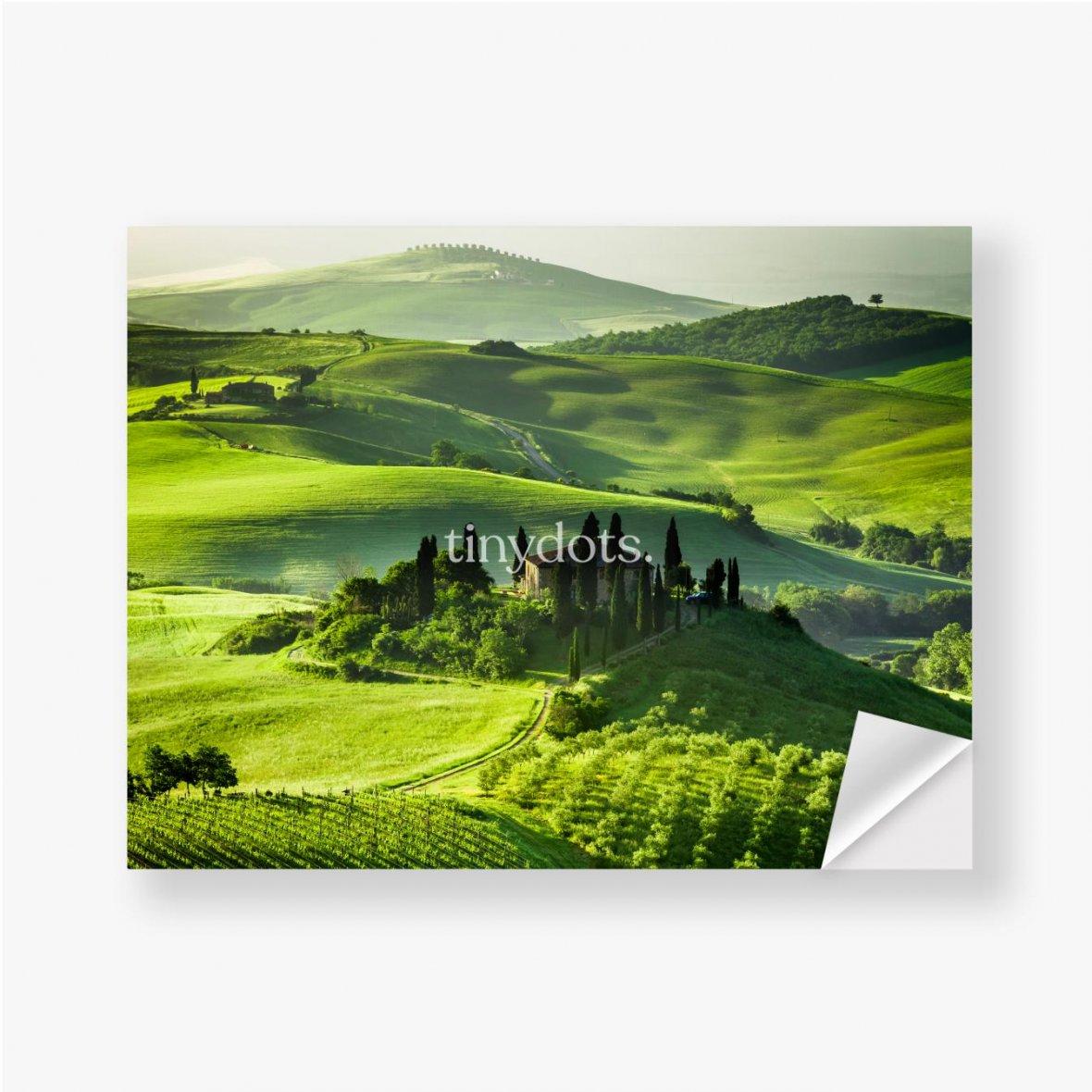 Aufkleber Bauernhof von Olivenhainen und Weinbergen, schöne Landschaft