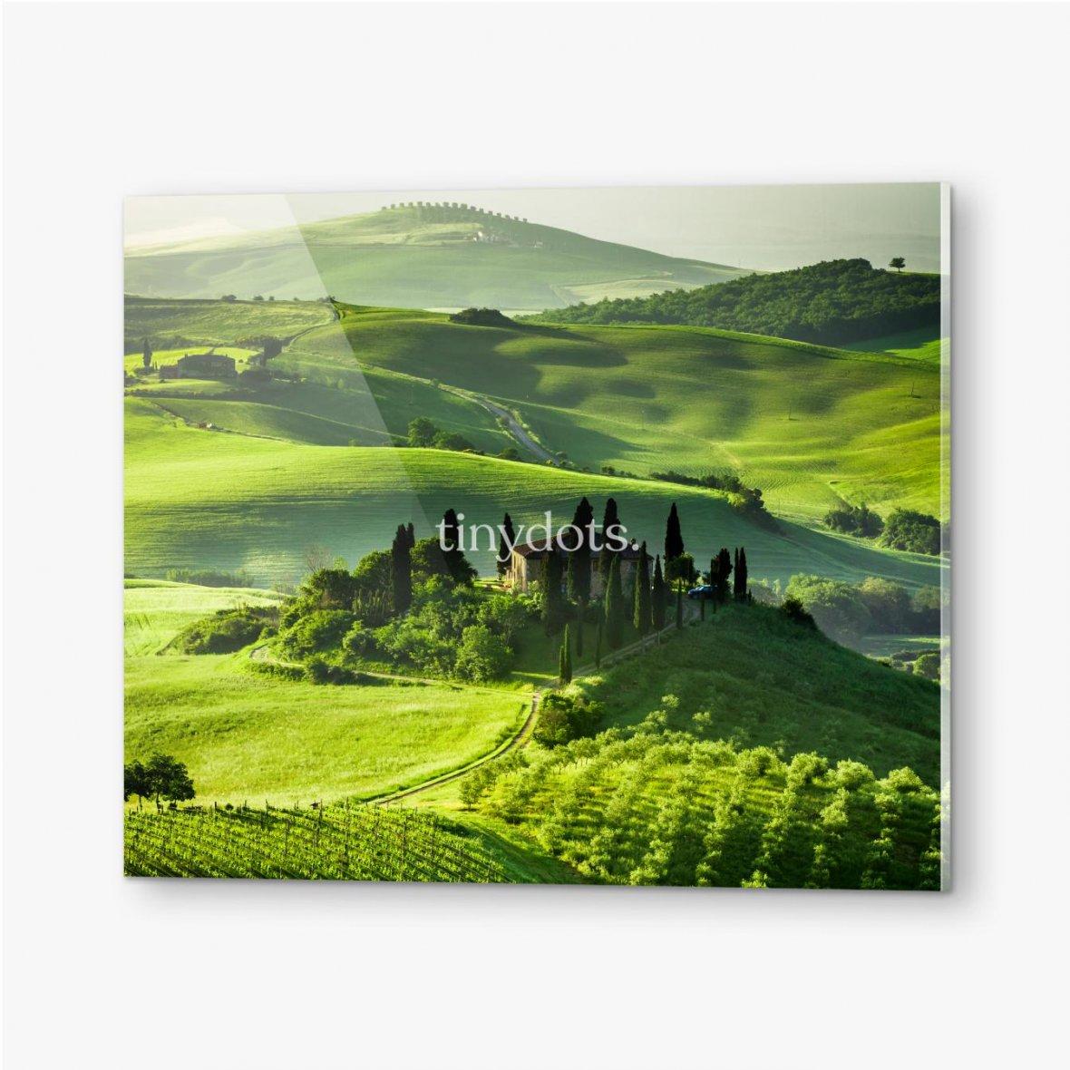 Bilder auf Acrylglas Bauernhof von Olivenhainen und Weinbergen, schöne Landschaft