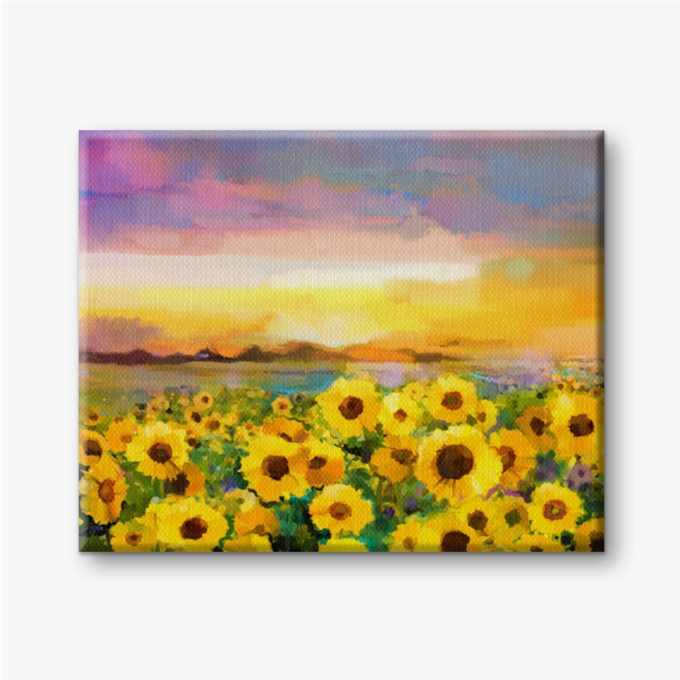 Gelbe Sonnenblumen in Feldern