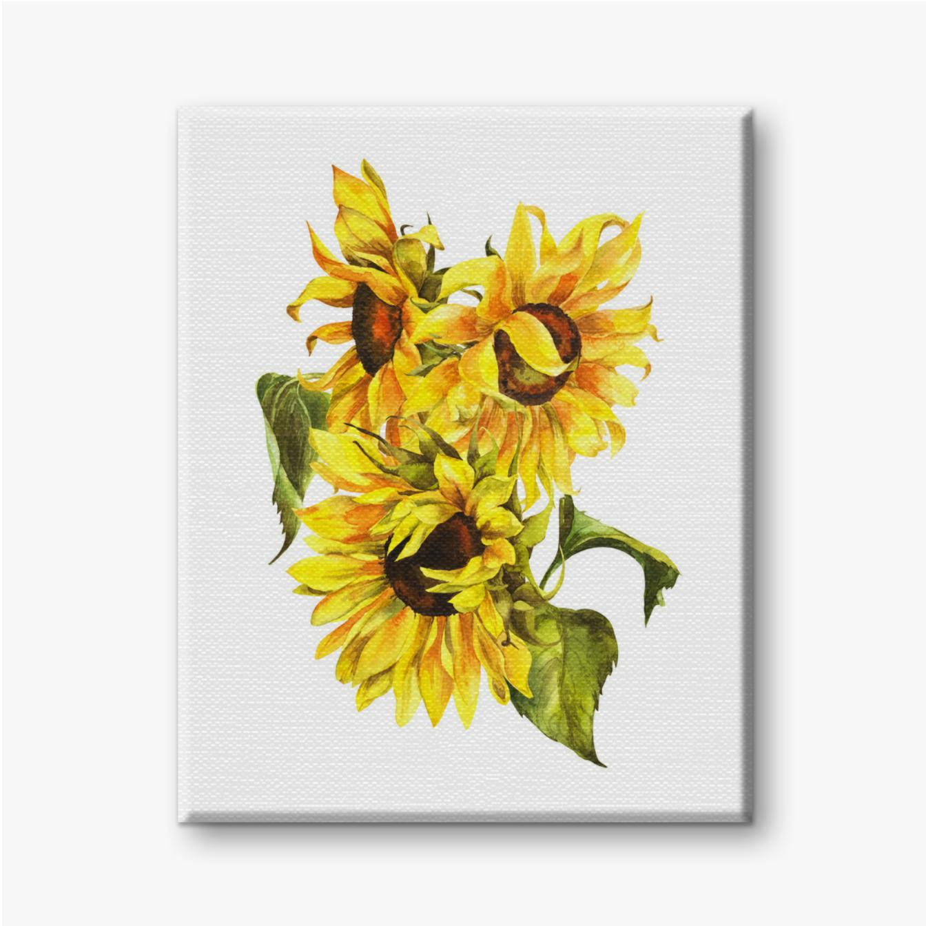 Drei Sonnenblumen in einem Blumenstrauß auf einem weißen Hintergrund
