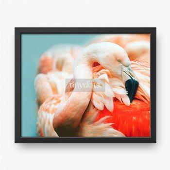 Rosa Flamingokopf im Profil. Türkisfarbener Hintergrund.