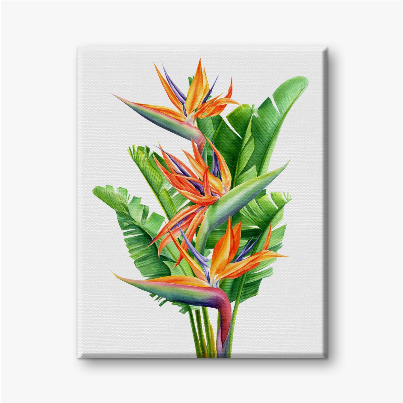 Strauß tropischer Blumen und Blätter strelitzia auf weißem Hintergrund