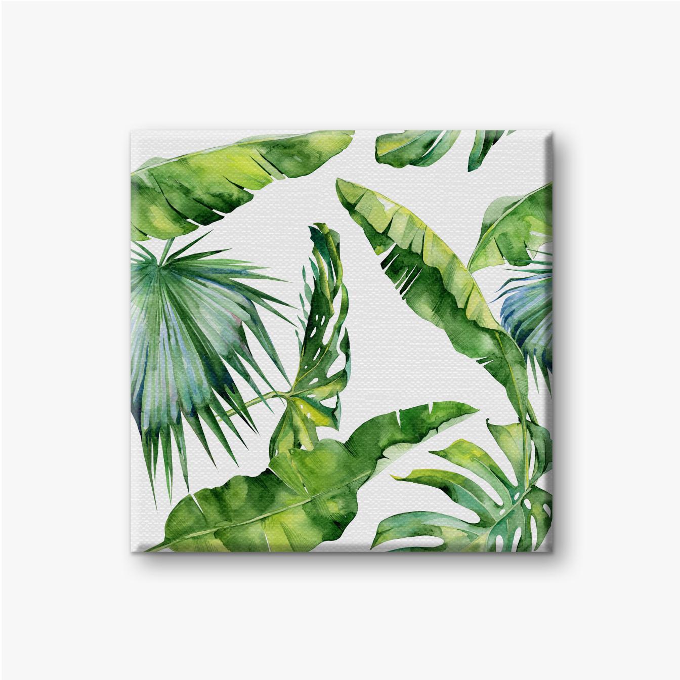 Leinwandbild Verschiedene exotische grüne Blätter