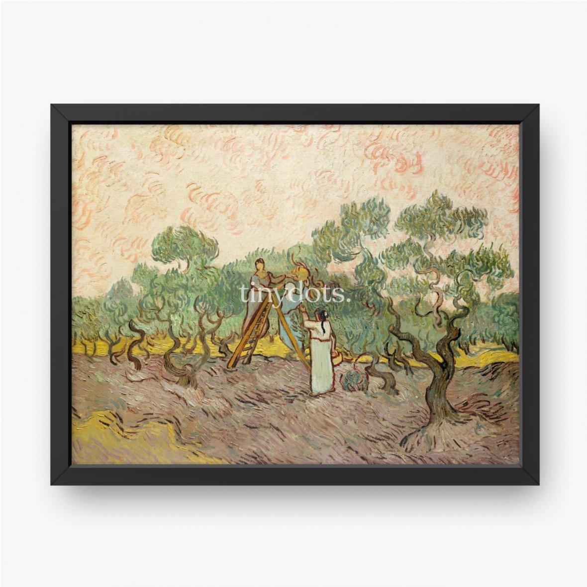 Plakat w ramie Vincent van Gogh, Kobiety zbierające oliwki, 1889