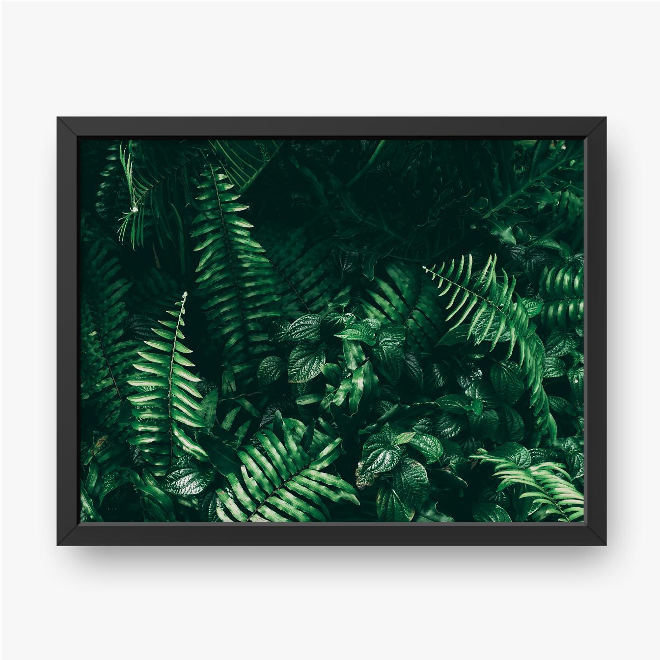 Zielony liść paproci